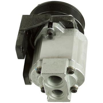 Daikin VZ80C33RJBX-10 Piston Pump