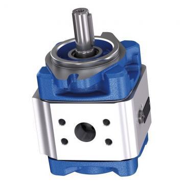 Yuken PV2R14-25-153-F-RAAA-31 Double Vane Pumps