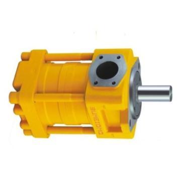 Yuken PV2R14-19-153-F-REAA-40 Double Vane Pumps
