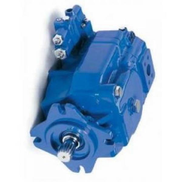 Denison PV10-2L1D-C00 Variable Displacement Piston Pump #1 image