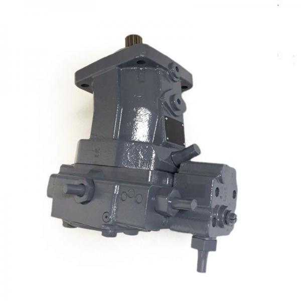 Denison PV10-1R1B-L00 Variable Displacement Piston Pump #1 image
