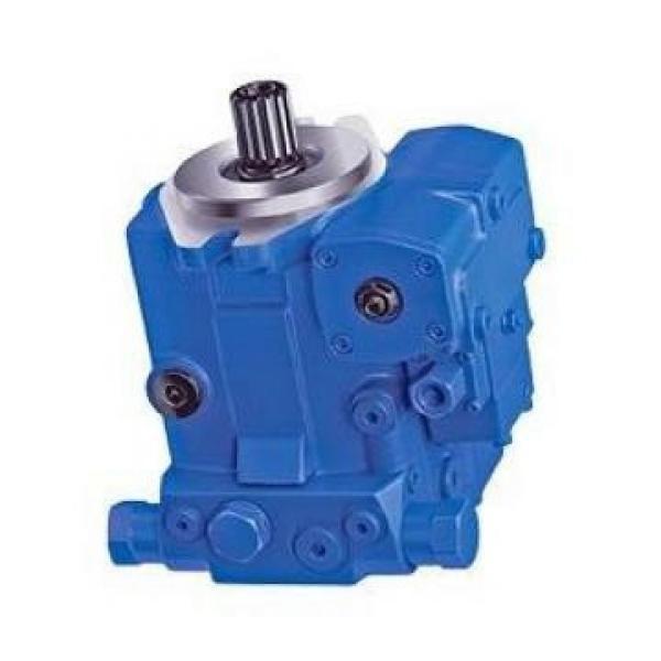 NACHI IPH-46B-20-125-11 Double IP Pump #1 image