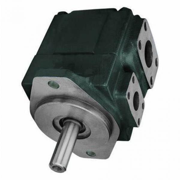 Vickers 2520VQ-19A8-1CC-10R Double Vane Pump #1 image